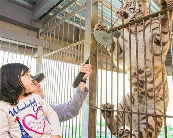 伊豆半島最大の動物園「伊豆アニマルキングダム」