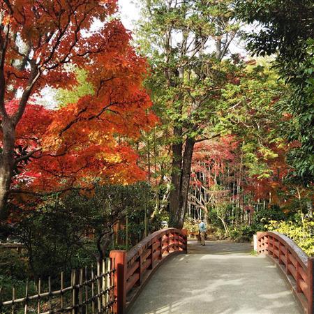 三島駅の目の前に広がる広大な自然。市立公園「楽寿園」